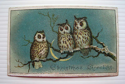 Victorian Christmas Card - Three Owls on a Branch with Crescent Moon1893 *