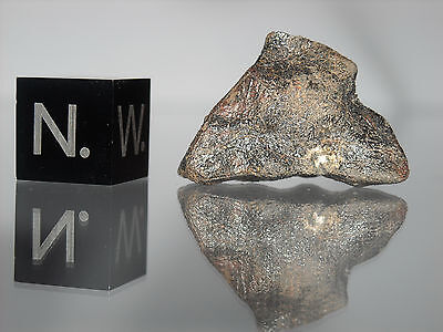 Camel Donga meteorite rare eucrite 4.4g perfect glossy crusted stone