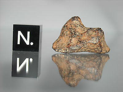 Agoudal - Imilchil IIAB iron meteorite 9.88g small complete individual