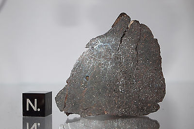 DHO 1288 meteorite rare H5 chondrite 28.0g slice ! From Oman, 2004