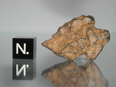 Agoudal - Imilchil IIAB iron meteorite 16.70g very nice complete stone
