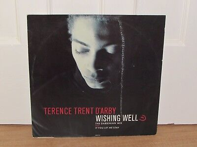 """Terence Trent D'Arby – Wishing Well 12"""" Vinyl  single Record"""