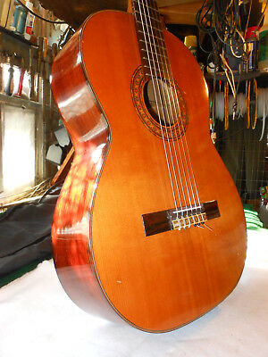 Epiphone by Gibson EC-25 Rosewood Classical Guitar, Japan Great Case