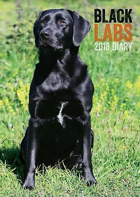 Black Labrador Dog A5 Desk Diary 2018 Great for Lab Lovers | BUY 2+ GET 10% OFF