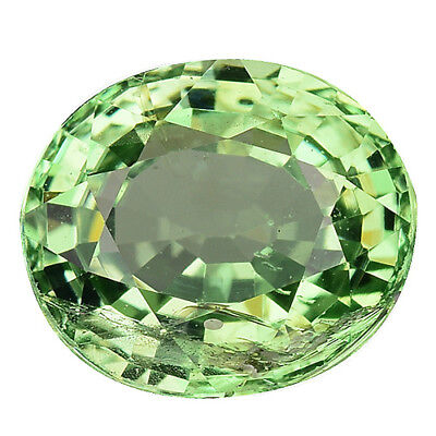 1.360 Cts  Properous Top Amazing Green Natural Tsavorite Garnet Oval See Video