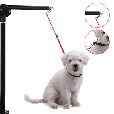 Pet Grooming Rope Dog Cat Cleaning Harness Adjustable Leash Holder Loop For Pets