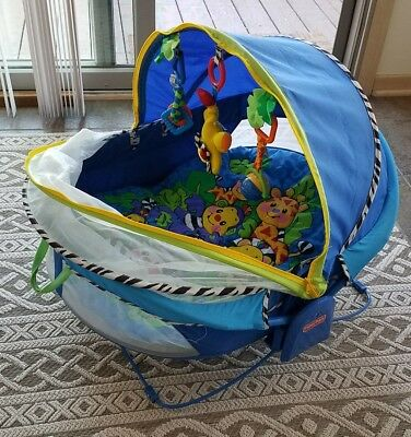 Fisher Price Bounce N Play Activity Dome Outdoor Sun Bug Netting Baby Tent