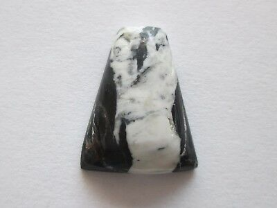 7.30 ct Natural White Buffalo (Howlite) Cabochon Gemstone 1AG 025