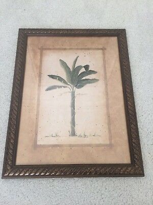 Tropical Palm Framed Print British Colonial Style