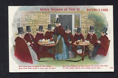 Bettws Y Coed Women at Tea Pull Out (Pre 1918) Conwy