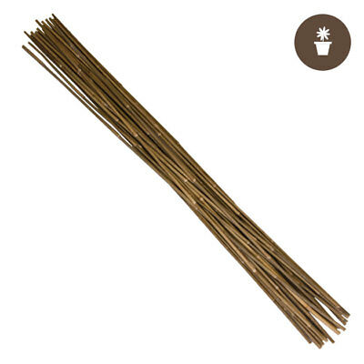 25 Pack Growers Edge 740730 Natural Bamboo 4