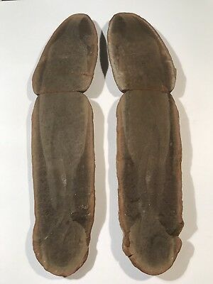 Mazon Creek Fossil Tully Monster Tullimonstrum gregarium 7 inches Awesome