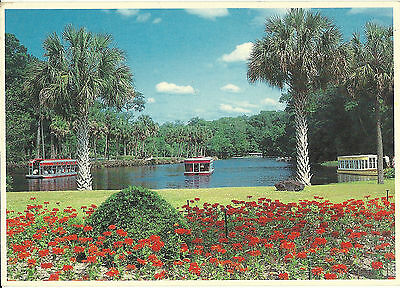 Postcard Silver Springs Glass Bottomed Boat Florida