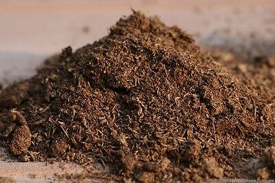 PEAT MOSS for Aquariums 100% Safe, Organic, Great for Shrimp & Fish