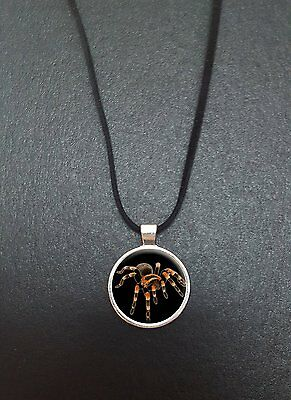 """Tarantula Spider Pendant On a 18"""" Black Cord Necklace Ideal Birthday Gift N316"""