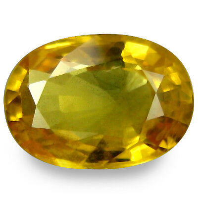 1.680CTS Marvlous luster yellow natural  sapphire oval loose gemstones see video
