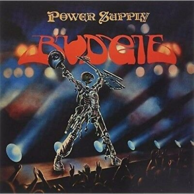 Power Supply - BUDGIE [LP]