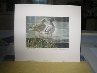 Wildlife Habitat Signed Print & Stamp:Top Canadian Artist, Robert Bateman