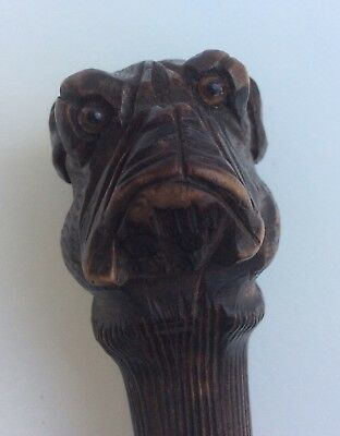 Antique Carved Stick Handle - Bull Dog