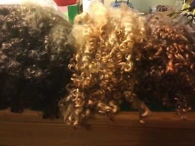 Wool locks Hand dyed English Leicester Longwool mixed browns 20gms