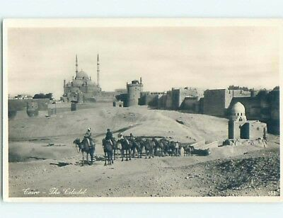 old rppc LINE OF CAMELS AT THE CITADEL Cairo Egypt HM2244