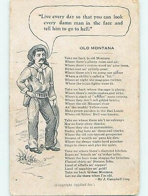 Divided-Back WESTERN COWBOY state of Montana HM6578