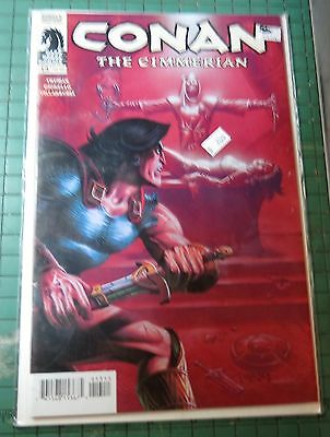 Conan The Cimmerian Dark Horse Comics #13  Lot C236
