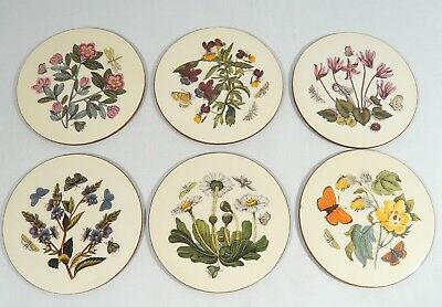 6 PORTMEIRION Susan William-Ellis COASTER Botanical Drink Glass Table Protector