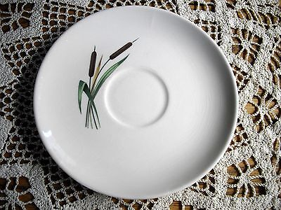 Vintage Universal Oven Proof White Cattail Saucer ~