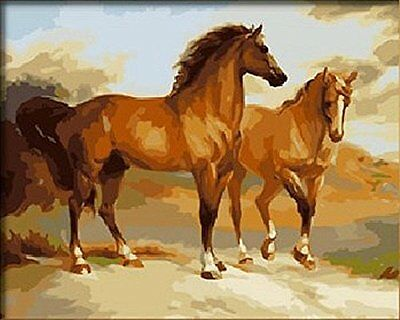 Diy oil painting, paint by number kits- Two horses 16*20 inches