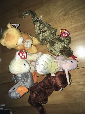 Ty Beanie Babies job lot