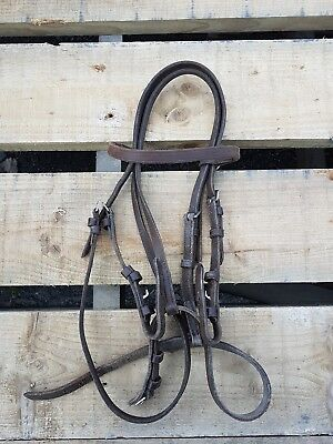 Shetland bridle section A brown James sterling