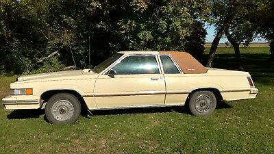 1981 Ford Thunderbird  Beautiful Low Mile Two-Owner Time Capsule 1981 Ford Thunderbird NO RESERVE!!!