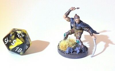 hand painted dungeons and dragons rogue