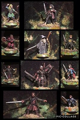 Games Workshop LOTR SBG Fellowship of the Ring Metal OOP - Competition Painted