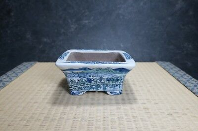 "Genuine Japanese Bonsai pot ""Tosui"""