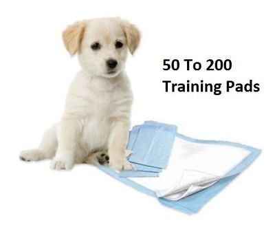 New 60X60 Pet Training Pads Toilet Pee Wee Mats Puppy Trainer Dog Cat Animal