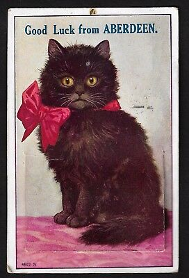 Vintage  Aberdeen Pull out Views Postcard Lucky black cat sent to Cheshire 1932