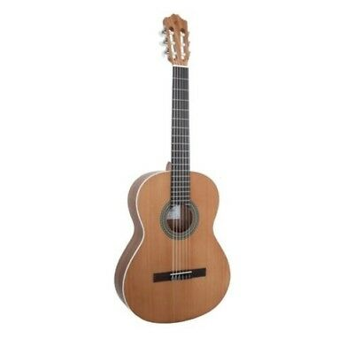 Classical Guitar Cuenca 5 Nature