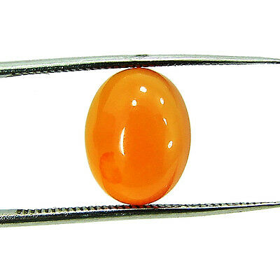 2.00 Ct Natural Orange Carnelian Loose Gemstone Oval Cabochon Stone - 5953