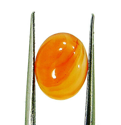 1.70 Ct Natural Orange Carnelian Loose Gemstone Oval Cabochon Stone - 5998