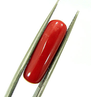 Lab Certified 5.44 Ct Natural Capsule Cabochon Red Coral Loose Gemstone (98636)