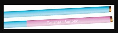 Twin Sunbed Tubes/Lamps Power Plus Leg 6ft1.8m 160W/250 0.3 EU NEW Pink And Blue