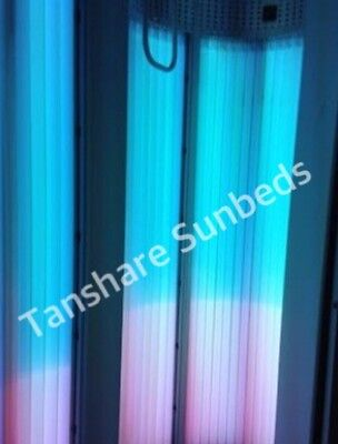 Twin Sunbed Tubes/ Lamps Power Plus Leg 2m 200W/250 0.3 EU  NEW Pink And Blue.