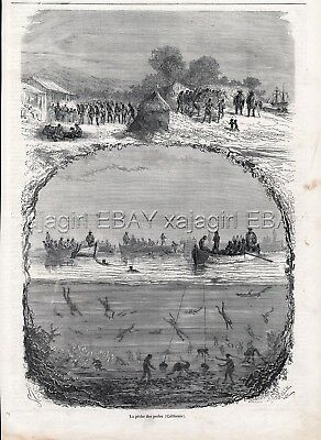 Pearl Diving, Morocco Casablanca, Large 1860s Antique Engraving Print & Article