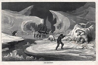 Polar Bear Hunting in the Arctic Regions 1860s Engraving Antique Print & Article
