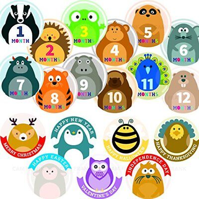 Baby Milestone Stickers AND Baby's First Holiday Monthly STICKERS 19