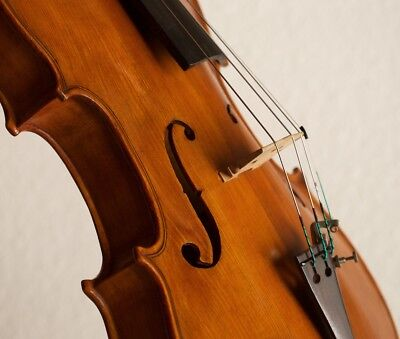 Amazing old violin viola with stamps Geige Bratsche fiddle