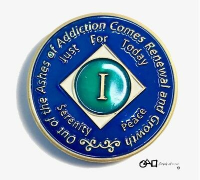 NA 1 Year Clean Time Coin Medallion Token Premium Quality Narcotics Anonymous