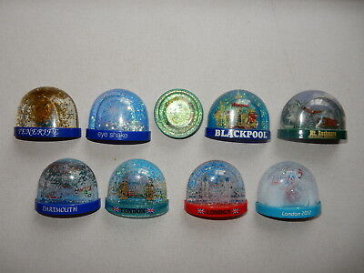 One Selected Souvenir Fridge Magnet Snow Dome from a Chosen Location